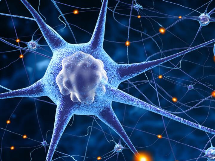 NeuroQuotient, coaching para potenciar el cerebro
