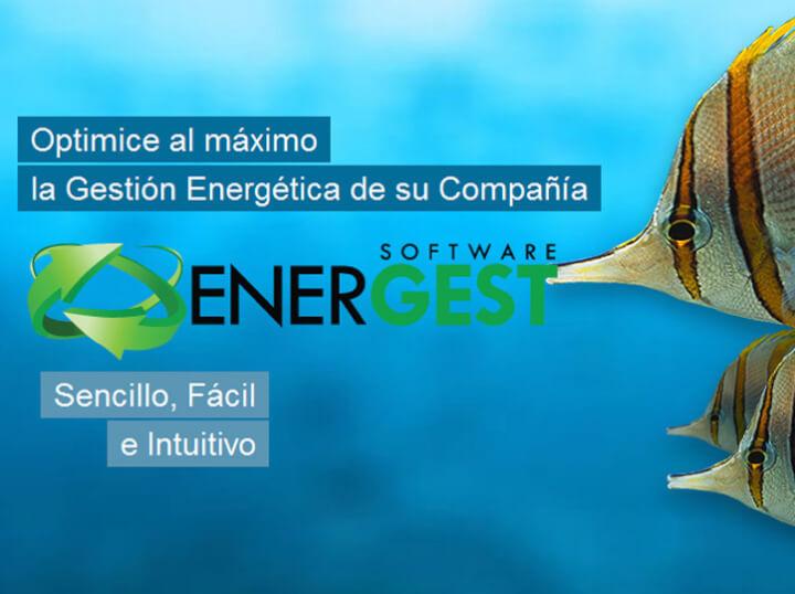 Software de gestión energética