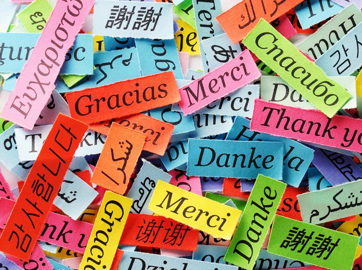Traducción y revisión de textos