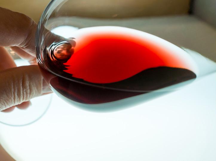 Descubre los secretos de la viticultura con tus compañeros de trabajo