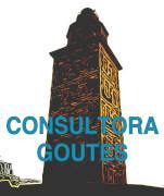 logotipo Consultora G. Outes
