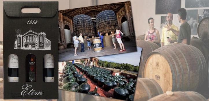Actividad de enoturismo y cata de vinos en el Priorat