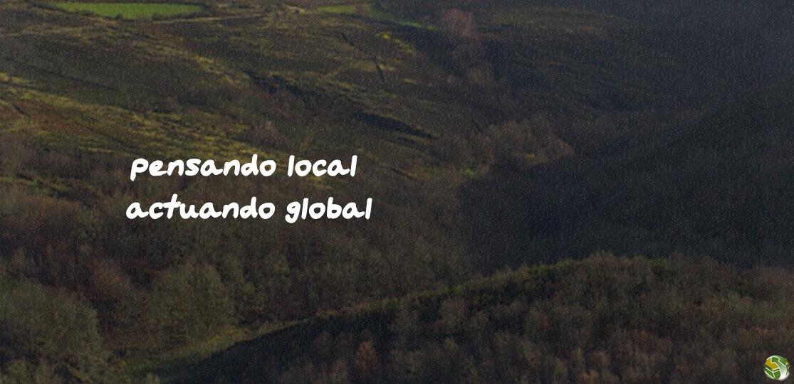 Consultoría ambiental para tu negocio