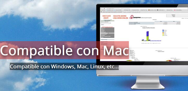Software de gestión online<br>