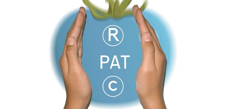 Registro de marcas, patentes, diseños y derechos de autor