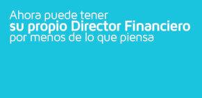 Director financiero por horas